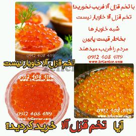 Negar 06112019 132046