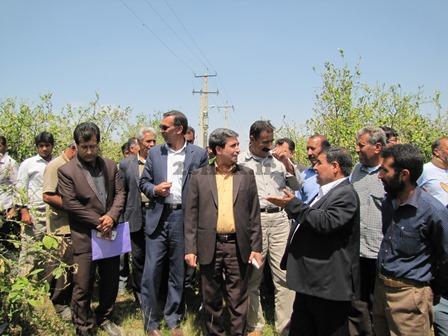 بازدید مدیر کل بحران استانداری فارس از مناطق خسارت دیده بارندگی رستم