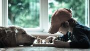 کودک   شطرنج   سگ
