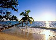 ساحل آرام دریا